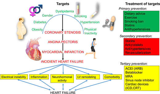 Heart failure european heart journal oxford academic schematic flow diagram of evolving targets and treatment allocations in ischaemic heart disease different targets and treatment allocations are indicated ccuart Choice Image