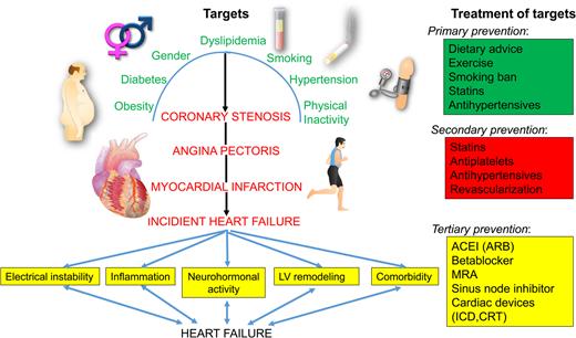 Heart Failure European Heart Journal Oxford Academic